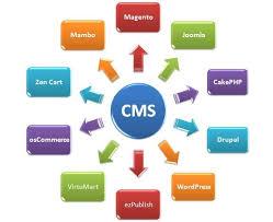 Продвижение нового (молодого) сайта и cms сайта